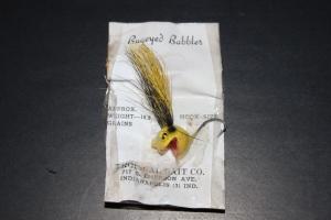 Tropical Bait Bugeyed Babbler